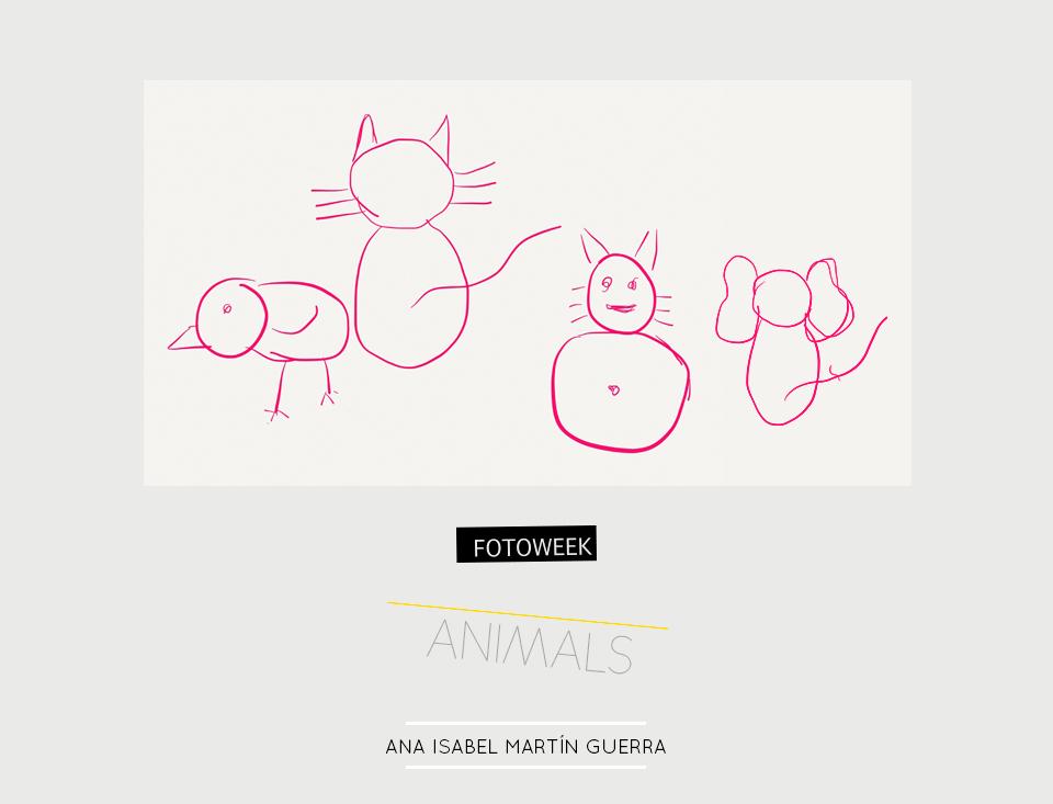 Fotoweek - Animals : Ana Isabel Martín Guerra © moversinmover