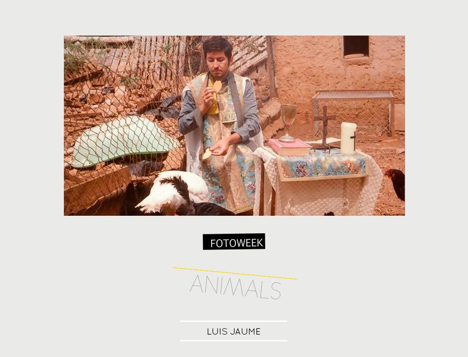 Fotoweek - Animals : Luis Jaume © moversinmover