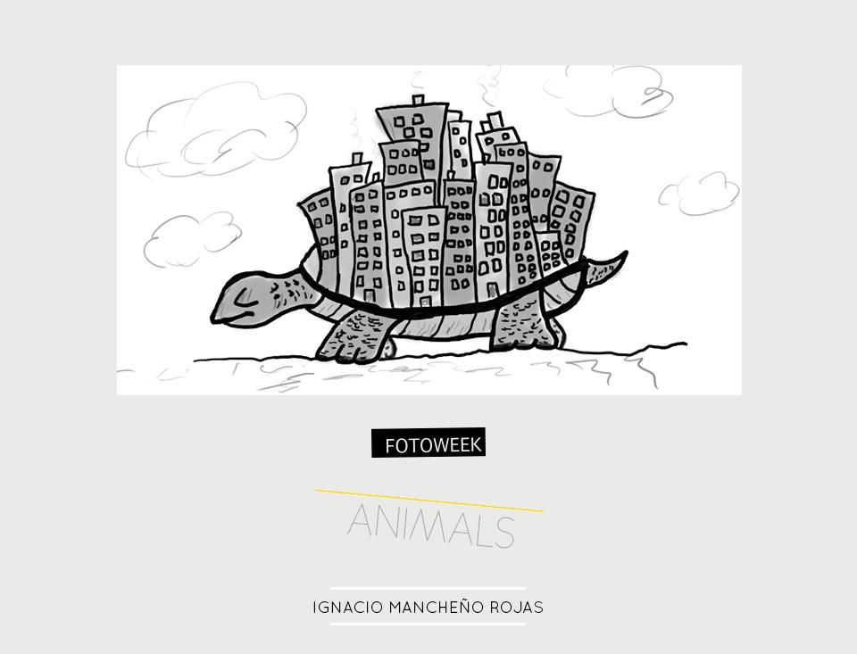 Fotoweek - Animals : Ignacio Mancheño Rojas © moversinmover