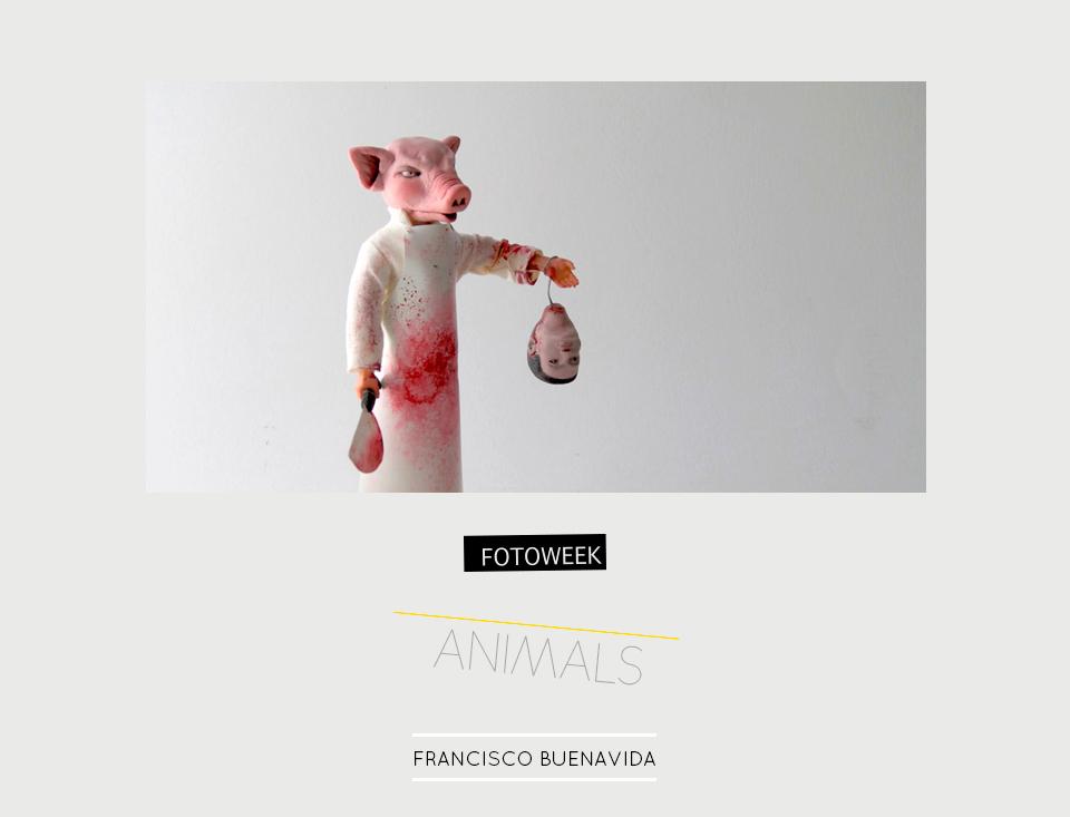 Fotoweek - Animals : Francisco Buenavida © moversinmover
