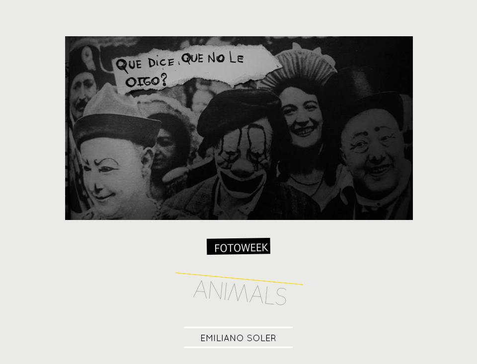 Fotoweek - Animals : Emiliano Soler © moversinmover