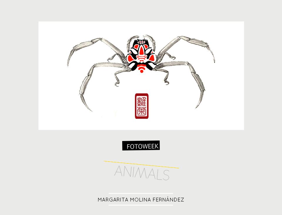 Fotoweek - Animals : Margarita Molina Fernández © moversinmover