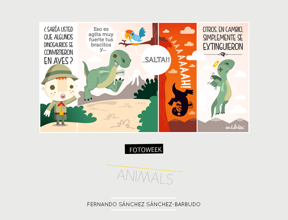 Fotoweek - Animals : Fernando Sánchez Sánchez-Barbudo © moversinmover