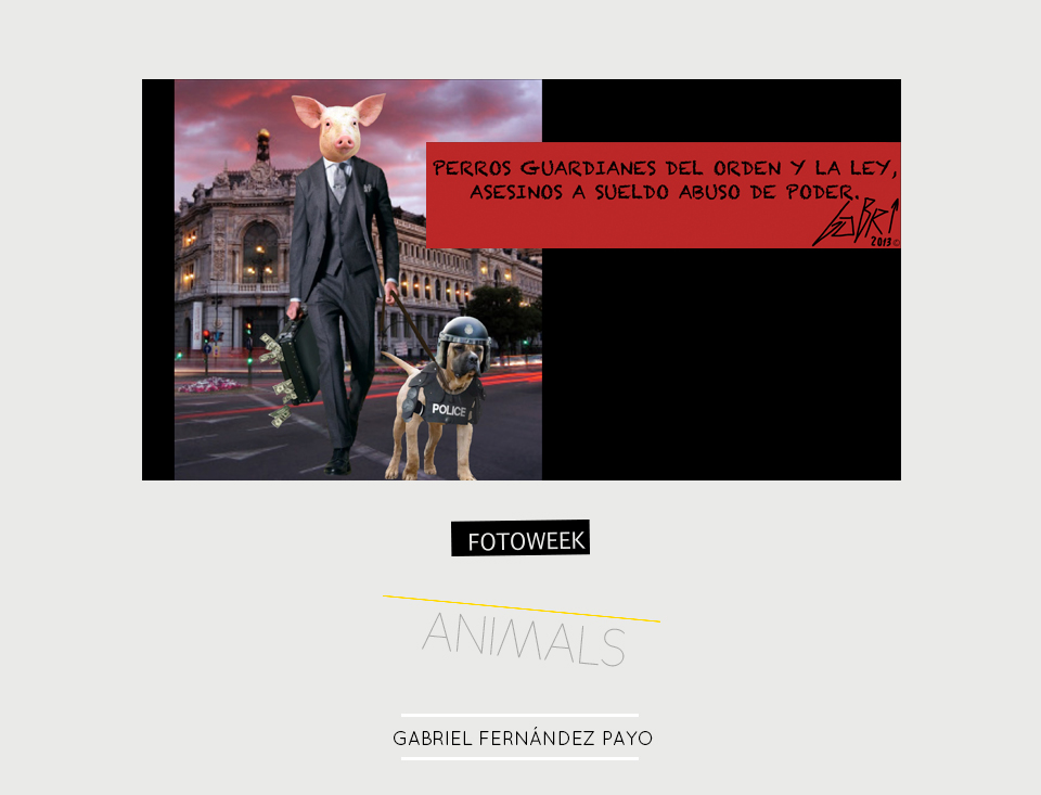 Fotoweek - Animals : Gabriel Fernández Payo © moversinmover