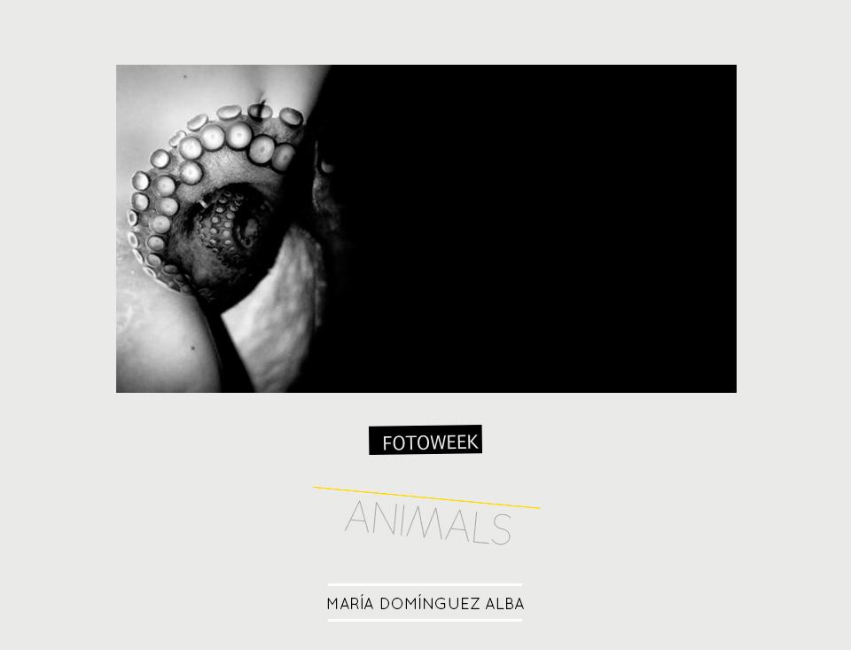Fotoweek - Animals : María D. Alba © moversinmover