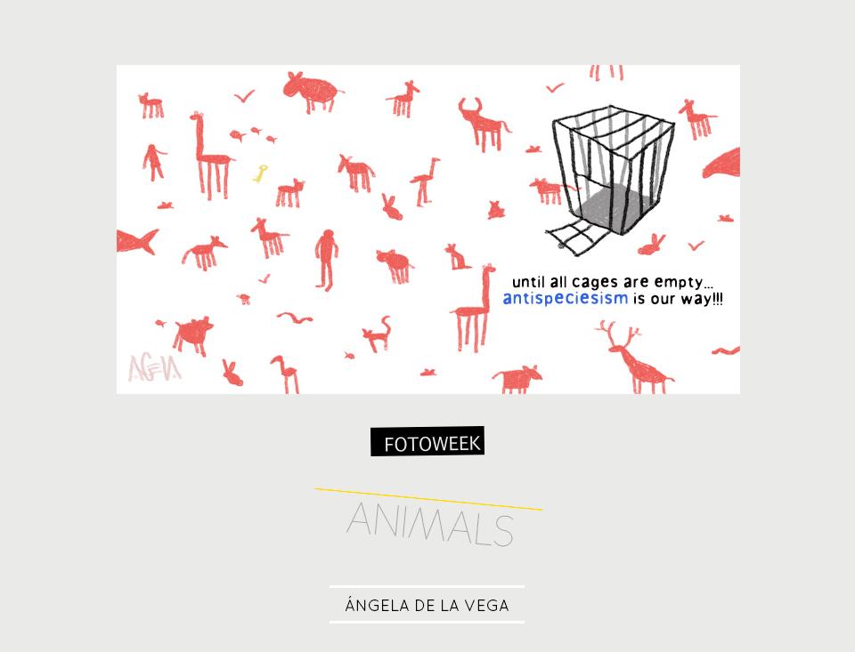 Fotoweek - Animals : Ángela de la Vega © moversinmover