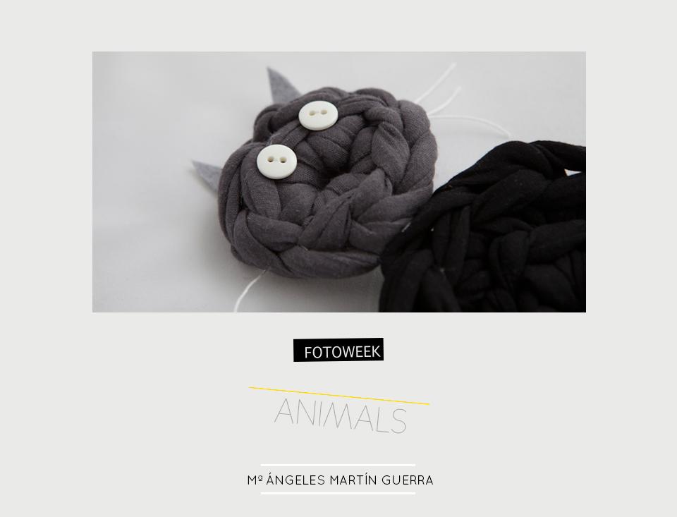 Fotoweek - Animals : Mª Ángeles Martín Guerra © moversinmover