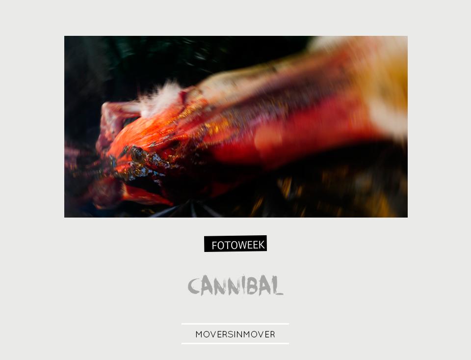 Fotoweek - Cannibal : moversinmover © moversinmover