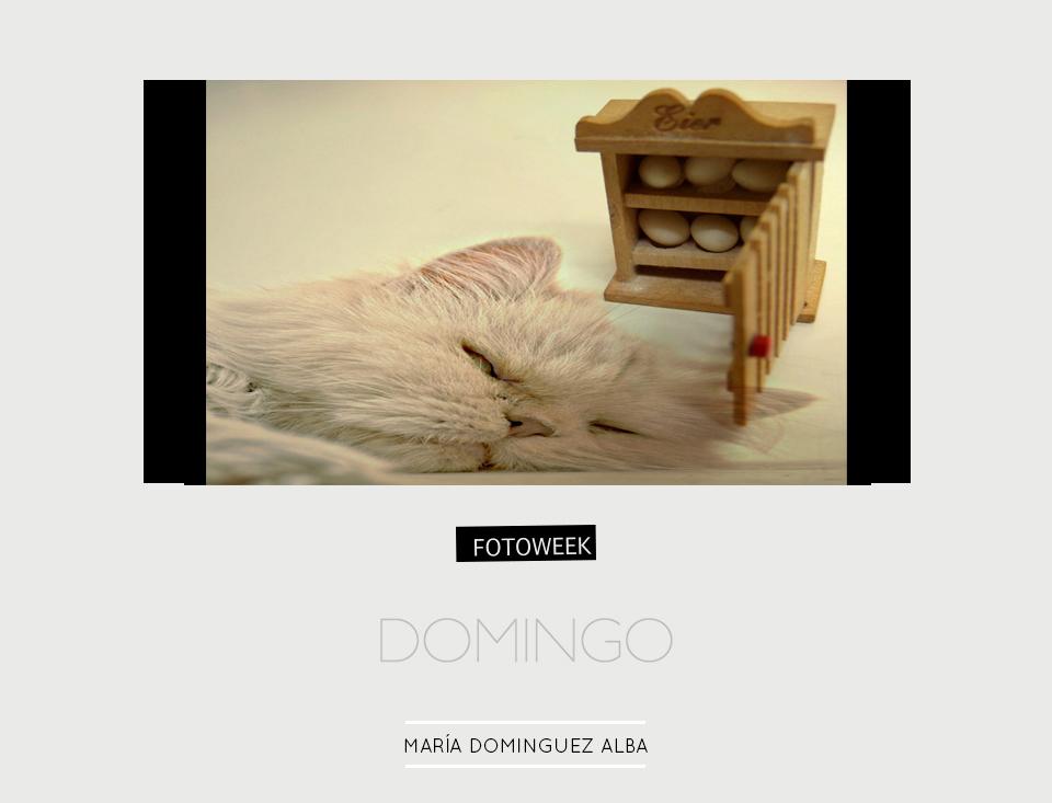 Fotoweek - Domingo : María D. Alba © moversinmover