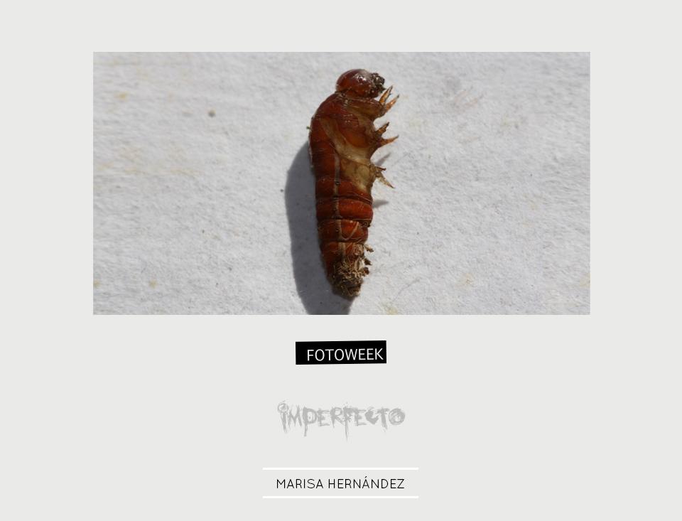 Fotoweek - Imperfecto : Marisa Hernández © moversinmover