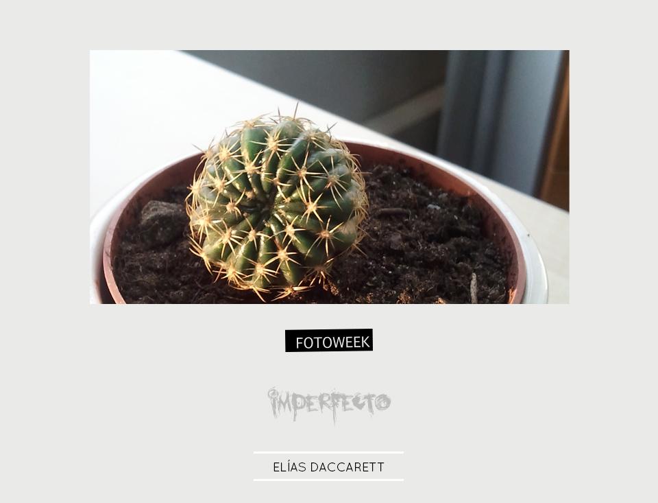 Fotoweek - Imperfecto : Elías Daccarett © moversinmover
