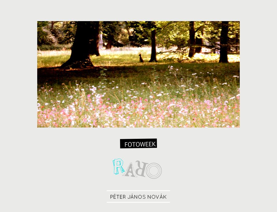 Fotoweek - Raro : Péter János Novák © moversinmover