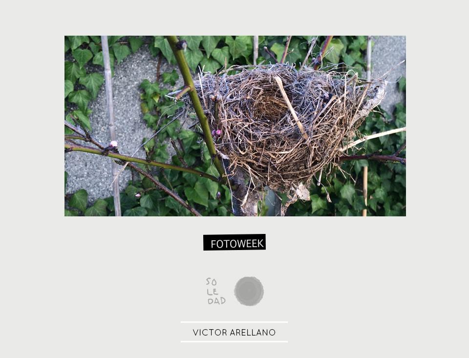 Fotoweek - Soledad : Victor Arellano © moversinmover