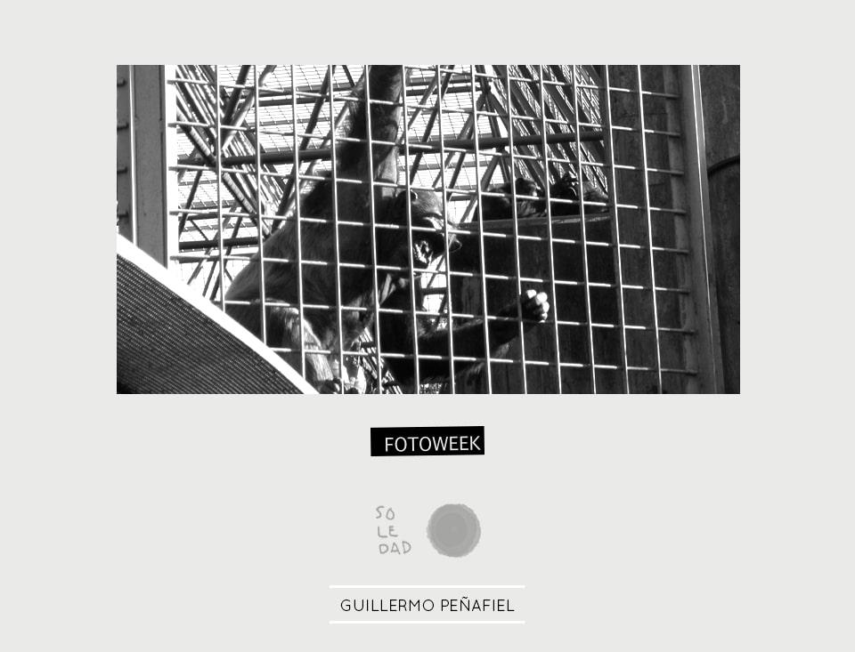 Fotoweek - Soledad : Guillermo Peñafiel © moversinmover