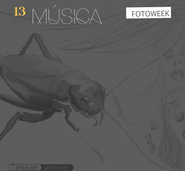 Galería online: Fotoweek - Música © moversinmover